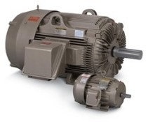 Crusher Duty Electric Motor